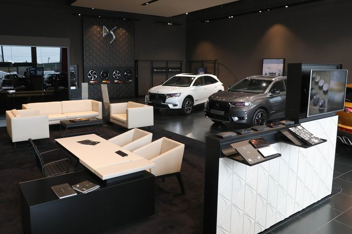DS Store Budapest