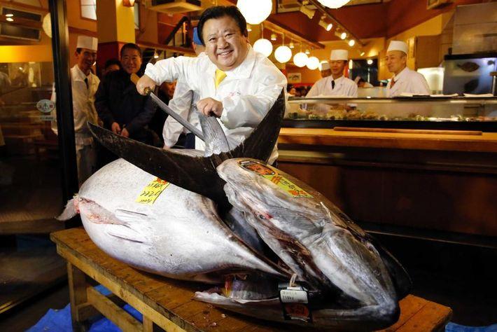 Japán sushi királya 3 milliót fizetett egy kékúszójú tonhalért