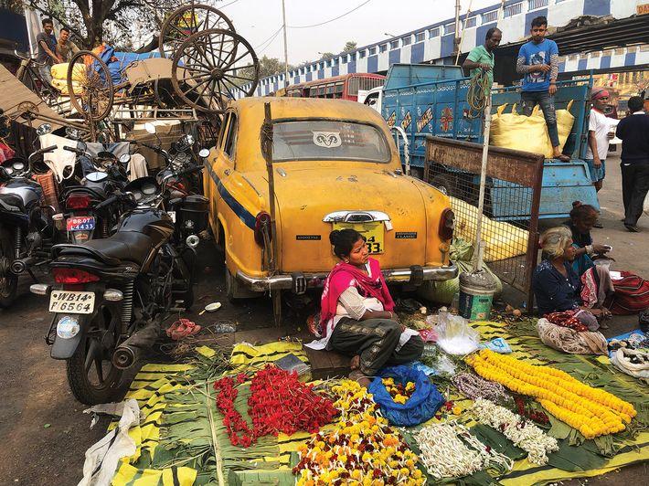 Jurák Zsolt - India
